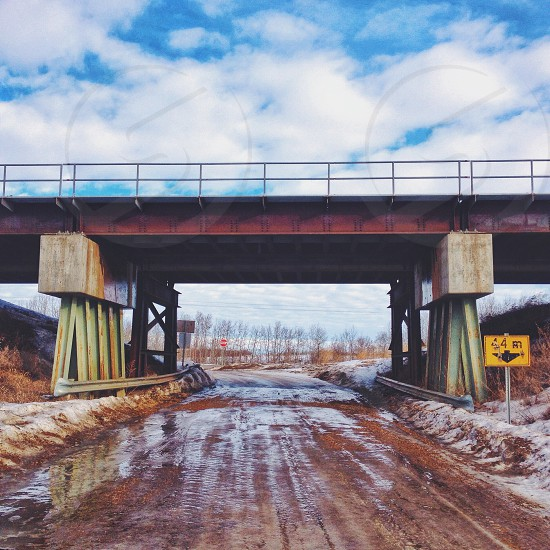 January thaw  photo
