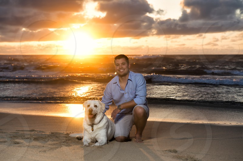 Puppy dog Sunset Hawaii lab photo
