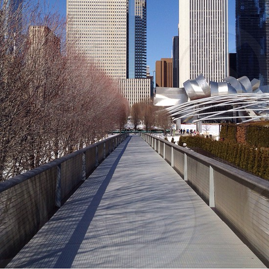 pathway towards city buildings photograpy photo