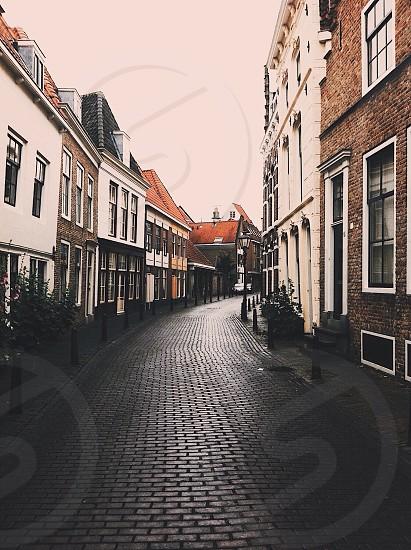 black bricked pathway photo