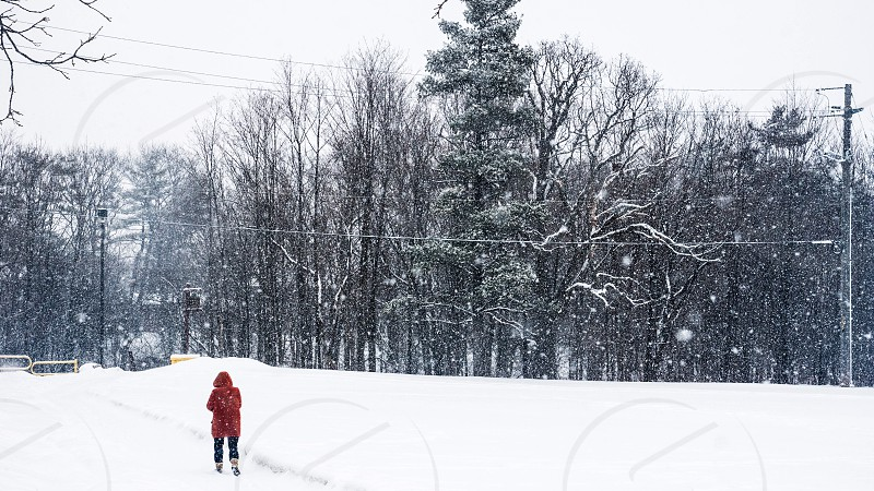 person walking during winter photo