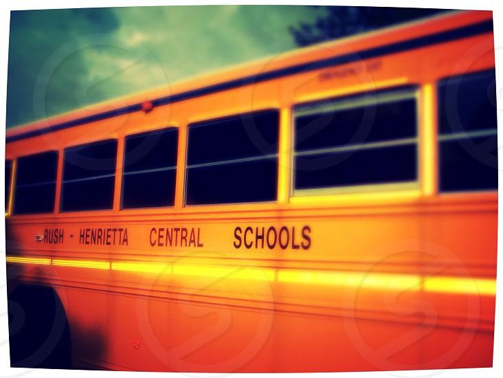 yellow bus photo