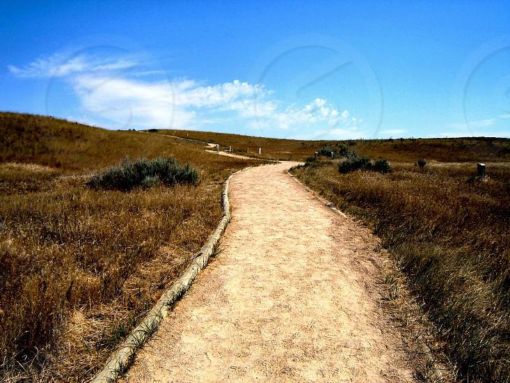 Road along the plains photo