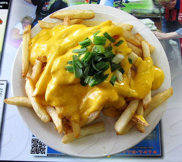 Burger covered with fries cheese sauce and green onions photo