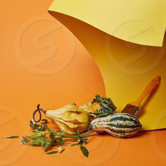 Autumn concept.Creative composition with pumpkins and brush on an orange background photo