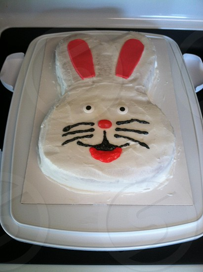 white and pink bunny cake photo