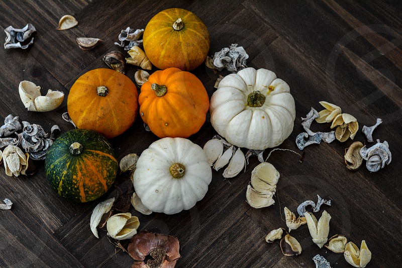Pumpkins on a table photo