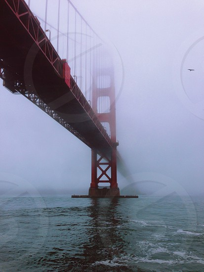 golden gate bridge over water photo