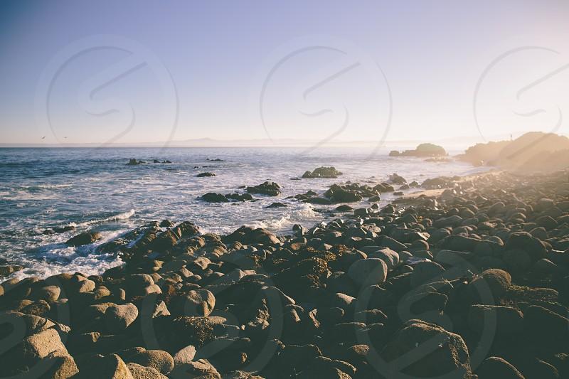 Along Ocean View Blvd in Pacific Grove California.  photo