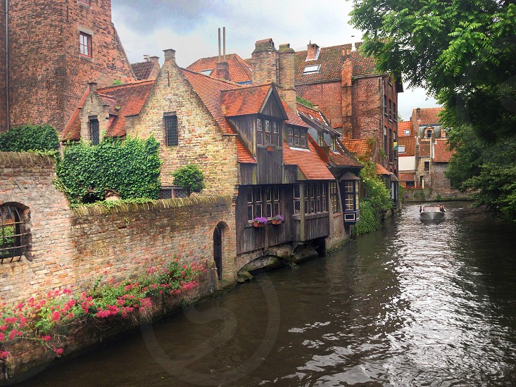 Bruge canal old bricks vines red roof flower boxes photo