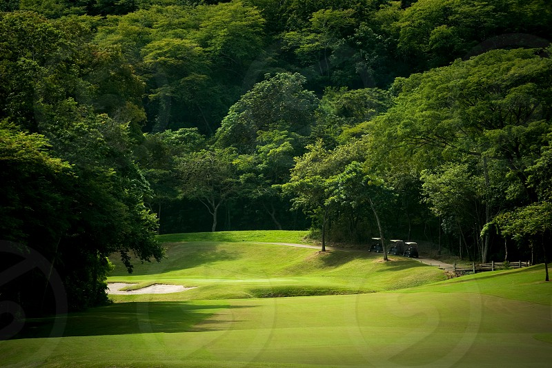 ball; birdie; cart; cloud; competition; country; course; drive; exercise; fairway; field; game; golf; golfer; golfing; grass; green; hobby; hole; landscape; leisure; mountains; nature; outdoors; par; path; play; pole; putting; recreation; resort; rough; sand; shadow; sport; sports; summer; swing; tee; tournament; trap; tree; trees; vacation; white photo