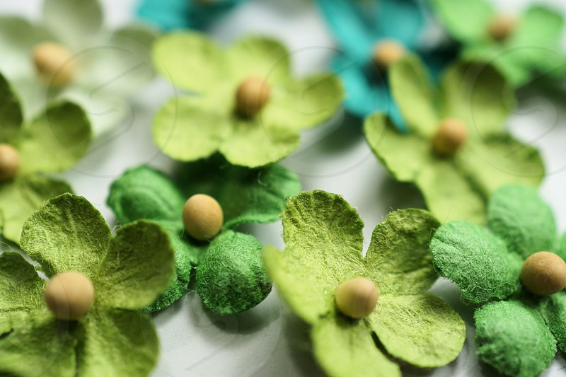 Green Paper Flowers photo