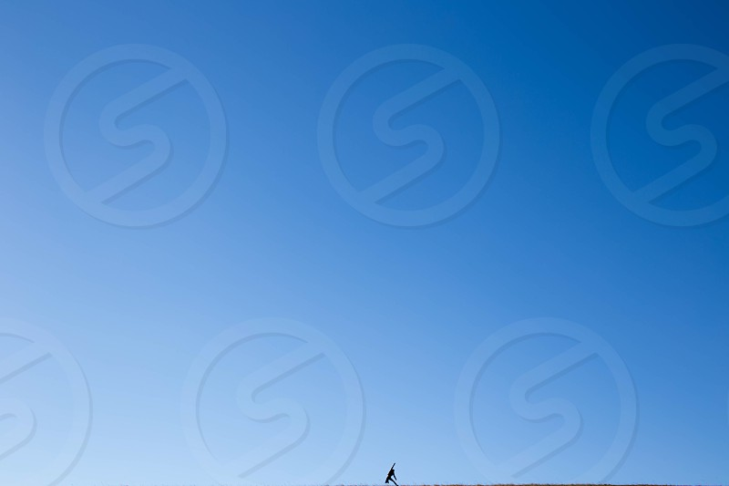 clear blue sky during daytime photo