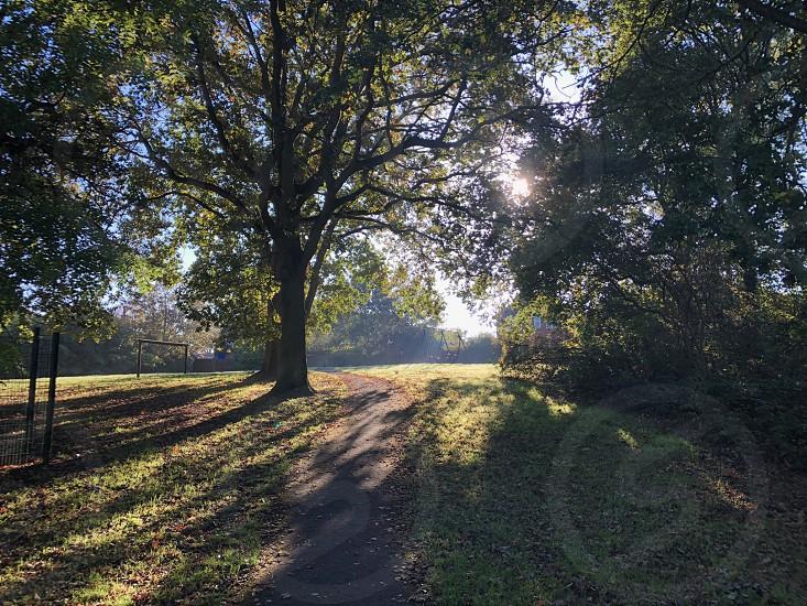 Morninglightshadows photo