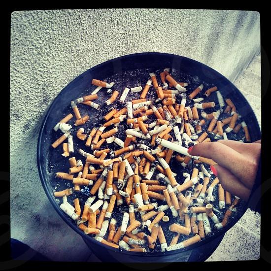 Kills. photo