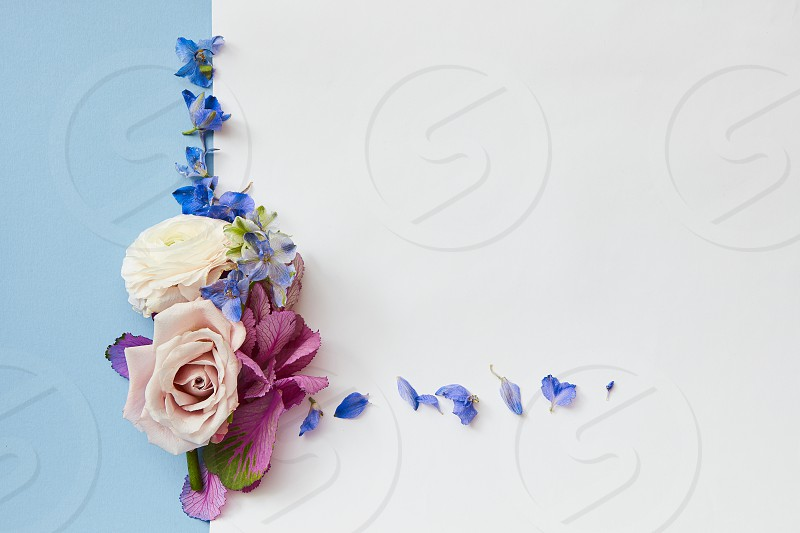 Greeting card with a frame of flowers on blue-white background with space for text flat lay photo