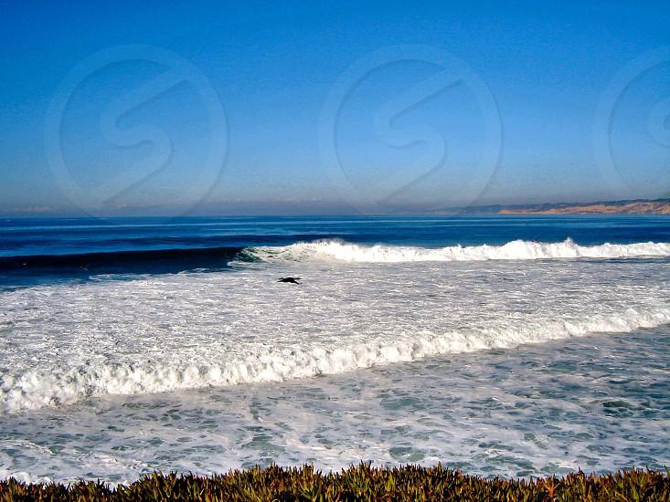San Diego Coastline photo