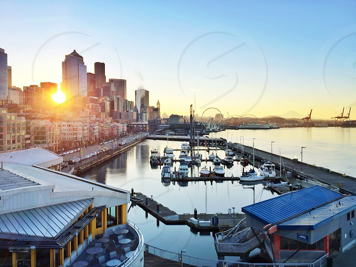 boats docked in a harbor with a city and a sunset in the distance photo