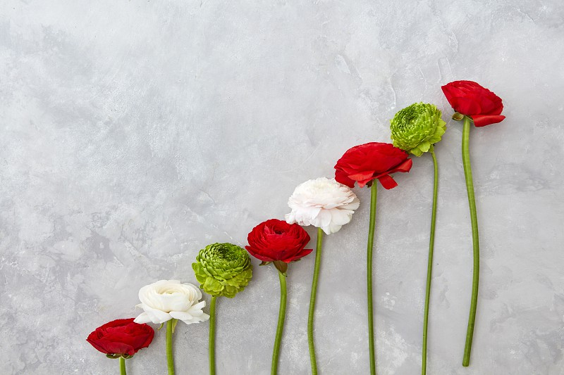 a composition from flowers of roses and chrysanthemums on a gray concrete background. Valentine's Day Mother's Day photo