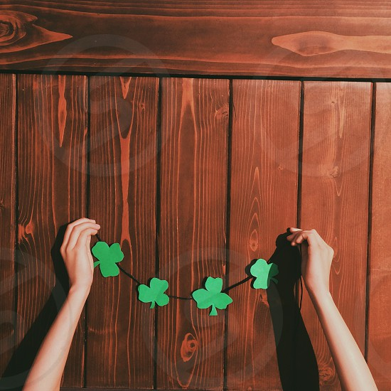 person holding a wired four pieces clovers photo
