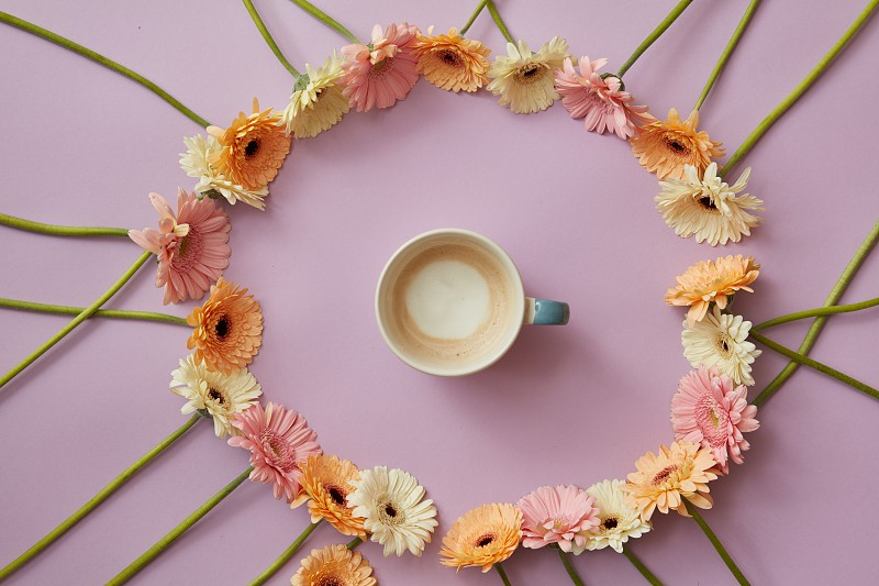 Blue cup of coffee in an a round frame of colorful gerbera flowers on a pink background with concept from Mother's Day photo