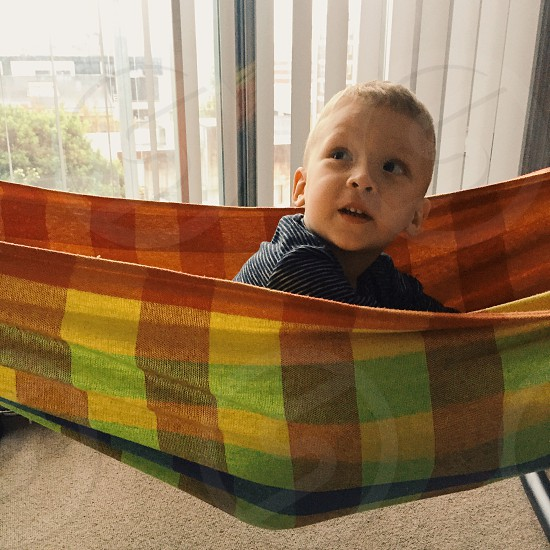 Little boy in hammock photo