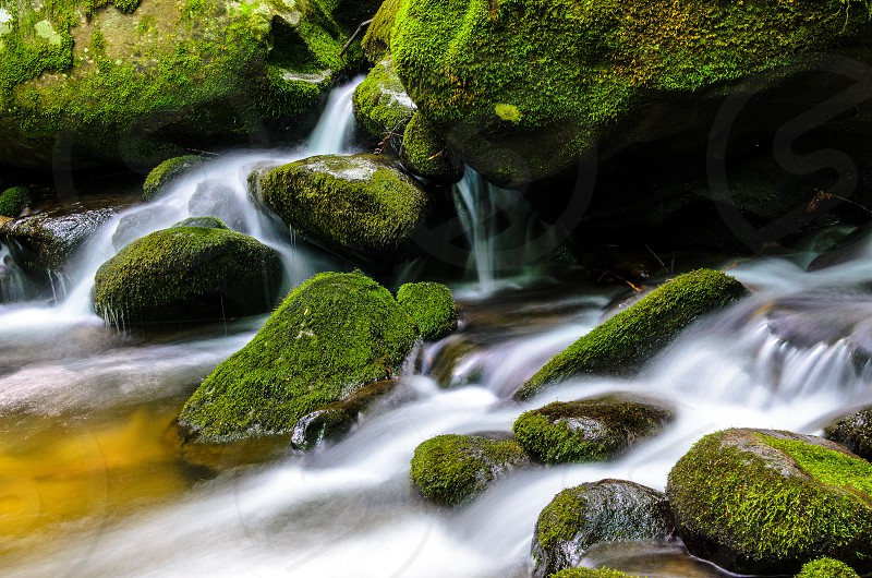 A Tennessee stream cascading through moss covered rocks. photo