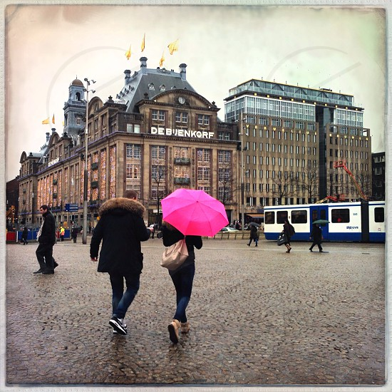 pink umbrella photo