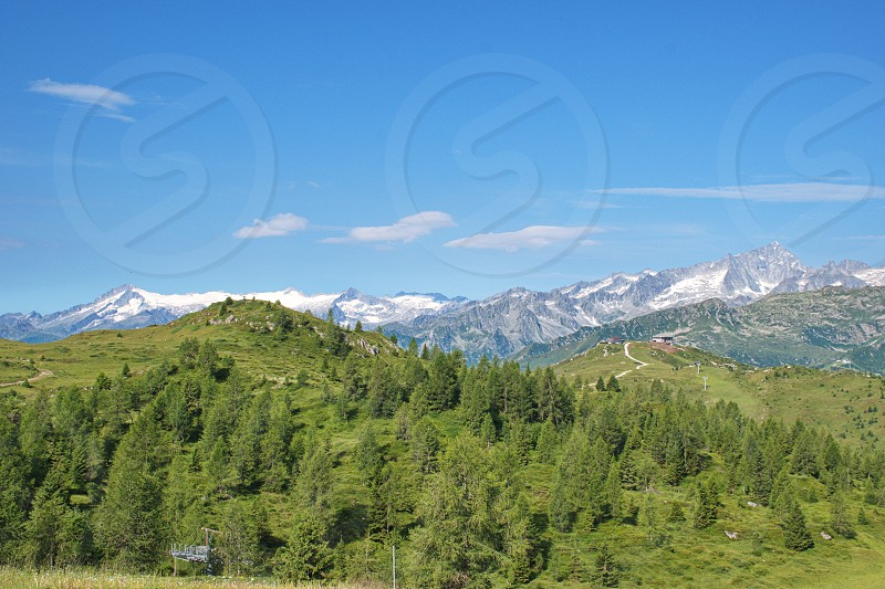 Meadows and forest in Brenta Dolomites with rocky and snowy mountains in the background photo