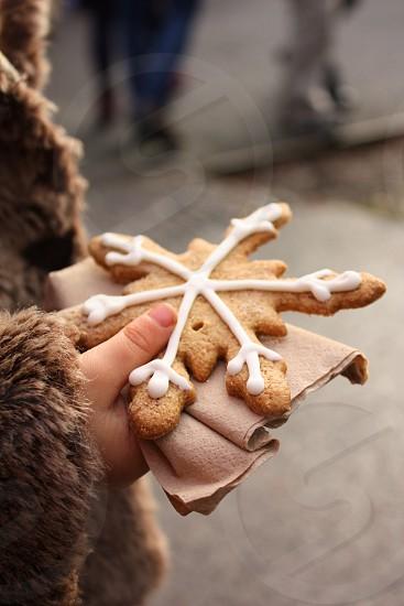 Winter snowflake biscuit photo