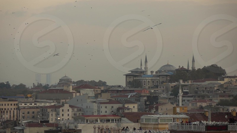 Arial view to ancient building of Istanbul Turkey with flying birds above old Mosque on a background of cloudy sky. Slow motion Full HD video 240fps 1080p. photo