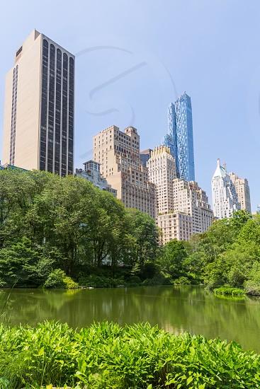 Central Park The Pond Manhattan New York US photo