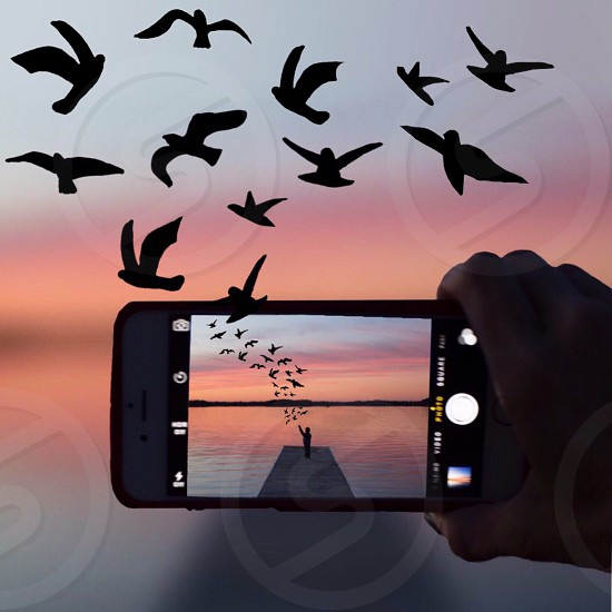 person holding silver iphone 6 taking photo of person standing on pier with flocks of birds flying during sunset photo