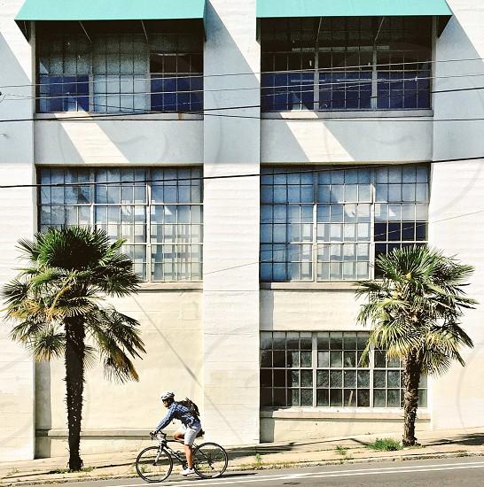 Cyclist city street palm trees photo