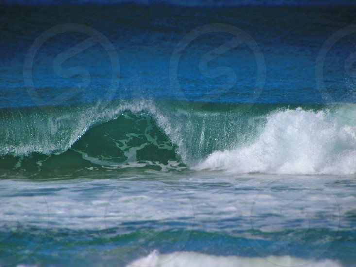 The Perfect Wave photo