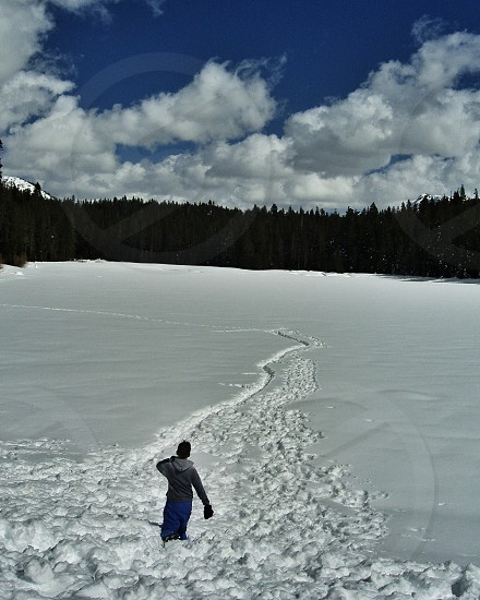 Teenager hiking through snow towards forest and blue sky photo
