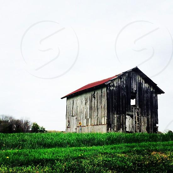 Barn grass country farm rural photo