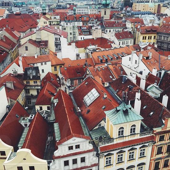 Prague city red tiles photo