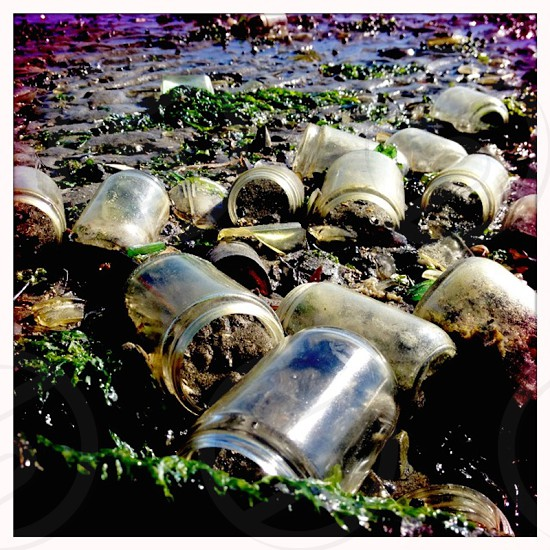 vintage jars that have washed up from an old landfill in Brooklyn NY photo