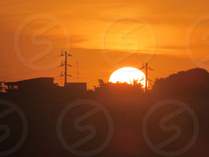 silhouette of trees house and power transmission posts during sun rise photo