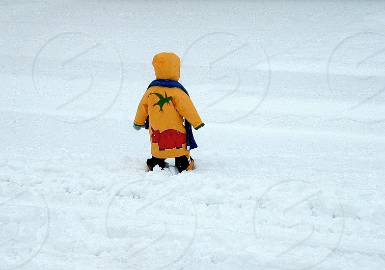 Snow child explores snow photo
