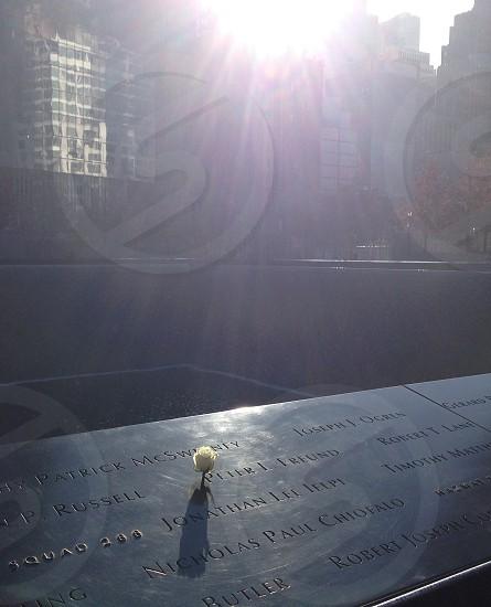 NYC 9/11 Memorial Rose photo