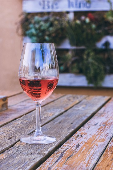 Rose wine table outdoors succulent planter afternoon summer photo