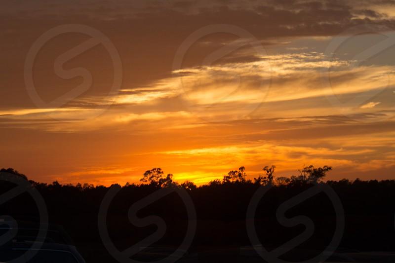 sunset over woods photo