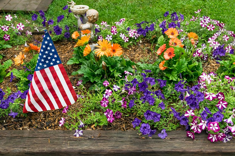 American flag blowing with the wind in a vibrant garden with orange and purple flowers photo