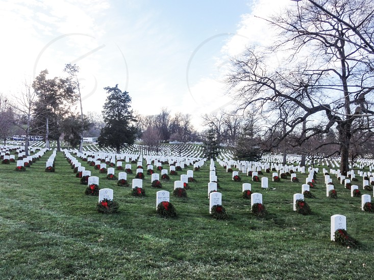 Arlington National Cemetery - Arlington Washington DC USA photo