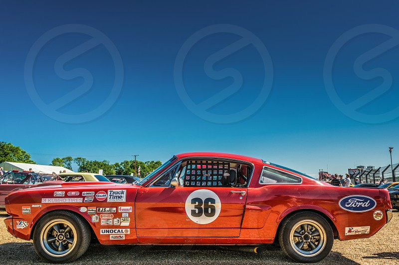1966 Ford Mustang Speedway Racer photo