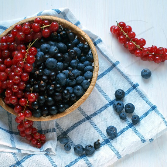 red currant and blueberry photo