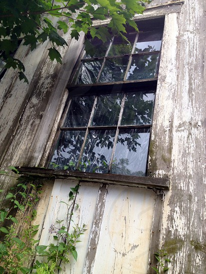 corroded white framed 6-panel window photo