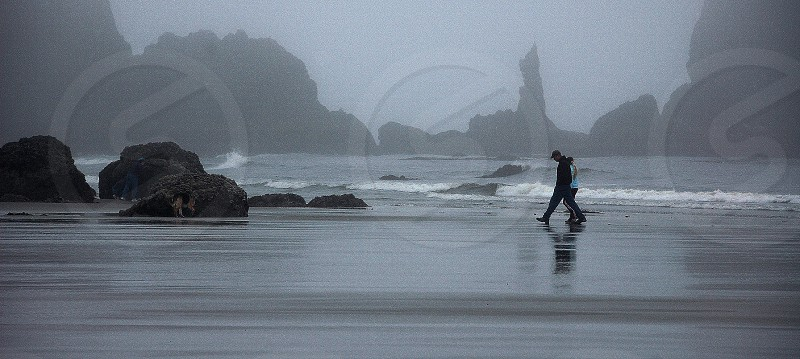 person walking on the seashore photo